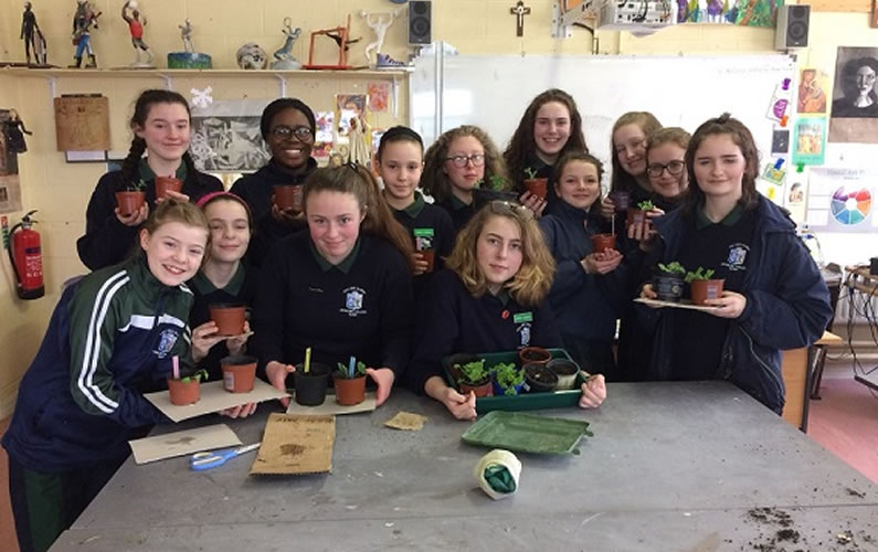 Green Fingers and the Green Council